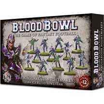 200-54 Blood Bowl - The Naggaroth Nightmares