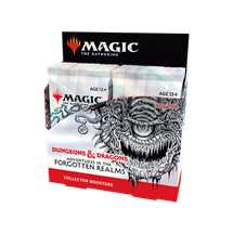 MTG - Adventures in the Forgotten Realms Collector Booster Display (12 Packs) - ENG